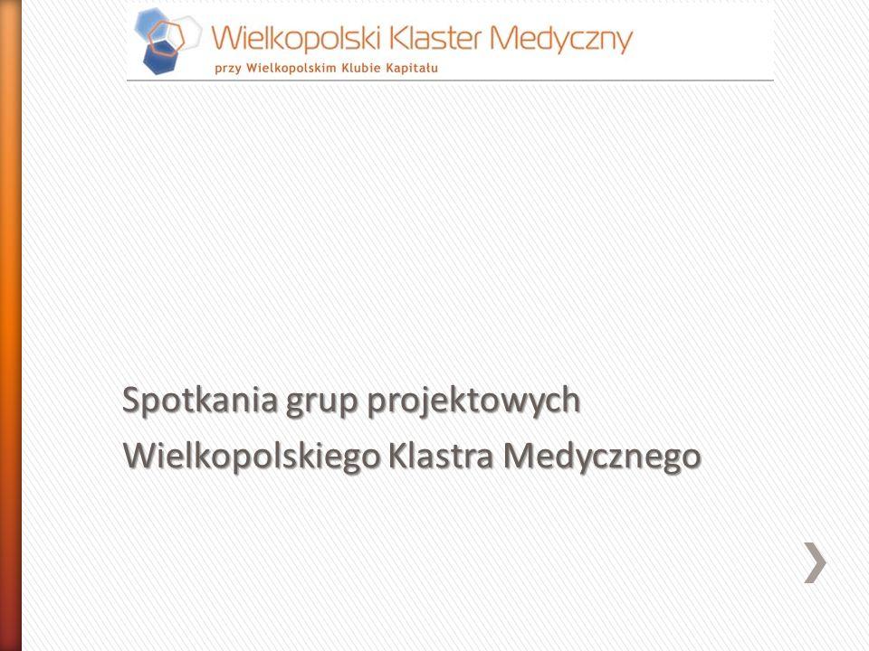 Spotkania grup projektowych Wielkopolskiego Klastra Medycznego