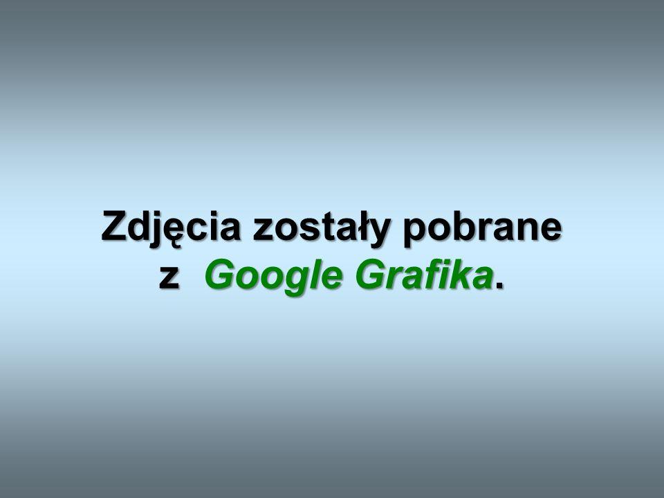 Patryk Julia Jędrzej Mikołaj Ewa Wiktoria PRZYGOTOWALI: