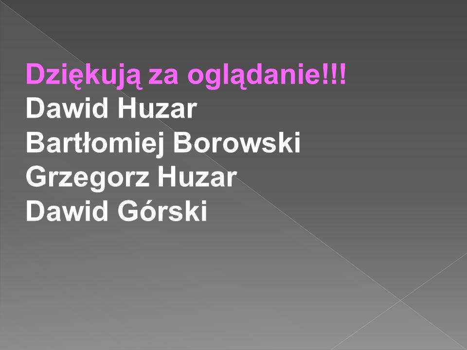 Dziękują za oglądanie!!! Dawid Huzar Bartłomiej Borowski Grzegorz Huzar Dawid Górski