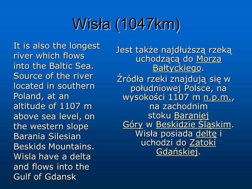 Wisła (1047km) Jest także najdłuższą rzeką uchodzącą do Morza Bałtyckiego. Morza BałtyckiegoMorza Bałtyckiego Źródła rzeki znajdują się w południowej