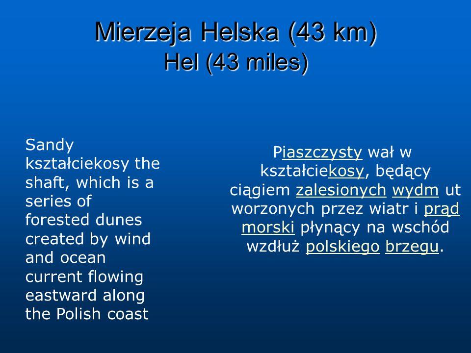 Piaszczysty wał w kształciekosy, będący ciągiem zalesionych wydm ut worzonych przez wiatr i prąd morski płynący na wschód wzdłuż polskiego brzegu.iasz