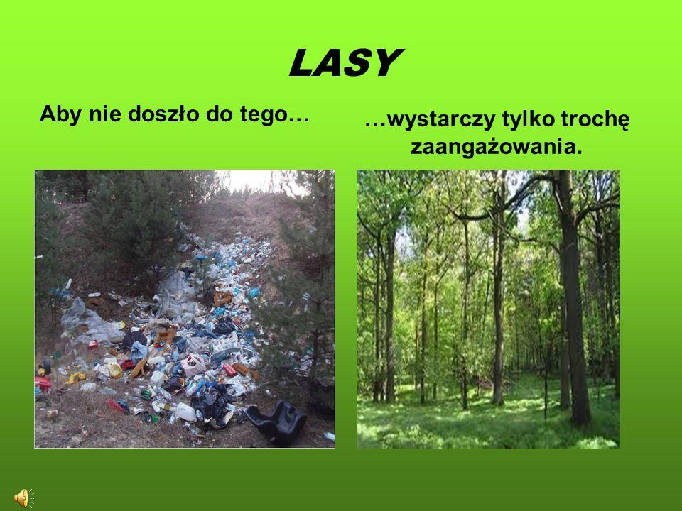 Szanowni Państwo! W dzisiejszych czasach możemy dostrzec, jak bardzo zmieniło się nasze środowisko. Chcemy zwrócić uwagę na to jak jest, a jak powinno