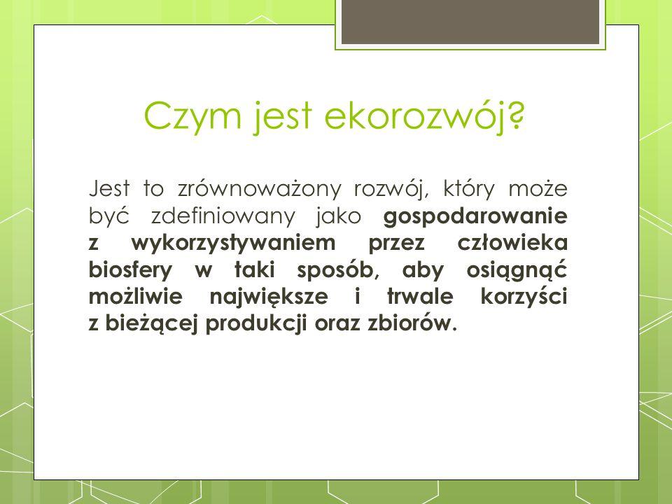 Wyniki ankiety: Co najczęściej kupujesz w sklepiku? a)Pieczywo b)Napoje c)Słodycze d)Owoce e)Inne