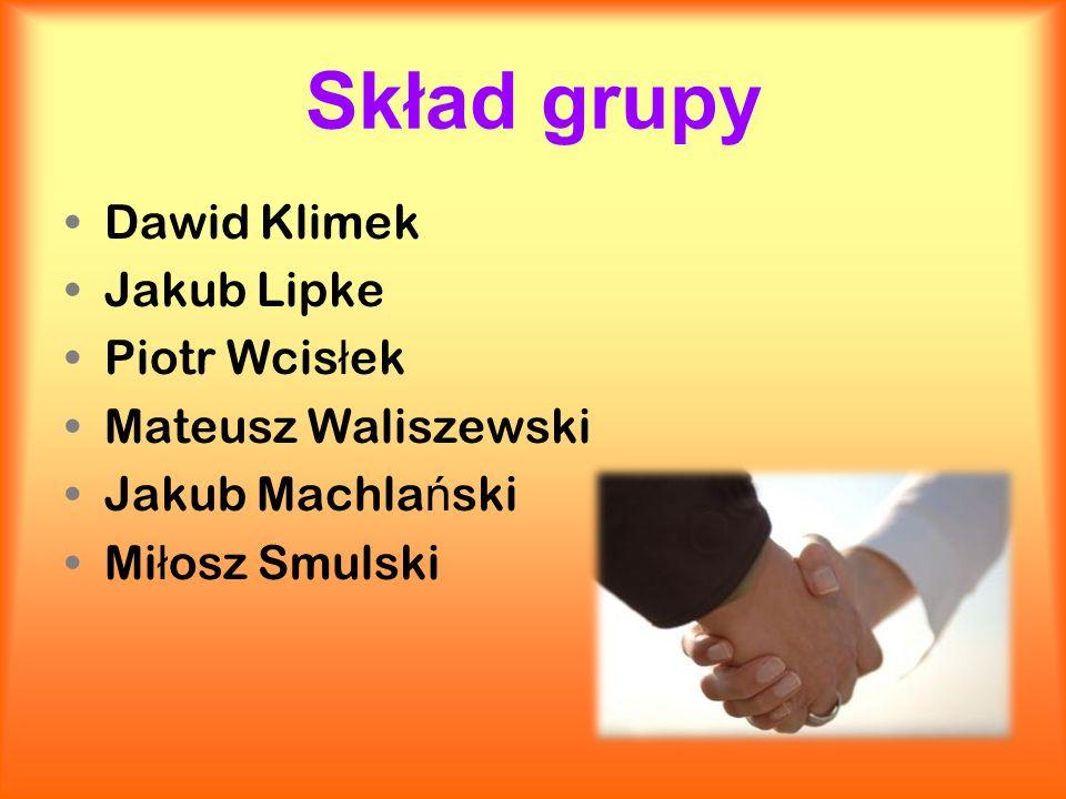 Skład grupy Dawid Klimek Jakub Lipke Piotr Wcis ł ek Mateusz Waliszewski Jakub Machla ń ski Mi ł osz Smulski