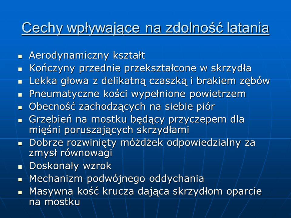 Materiały źródłowe Jefimow M, Sęktas M.Puls życia – podręcznik do biologii dla gimnazjum.