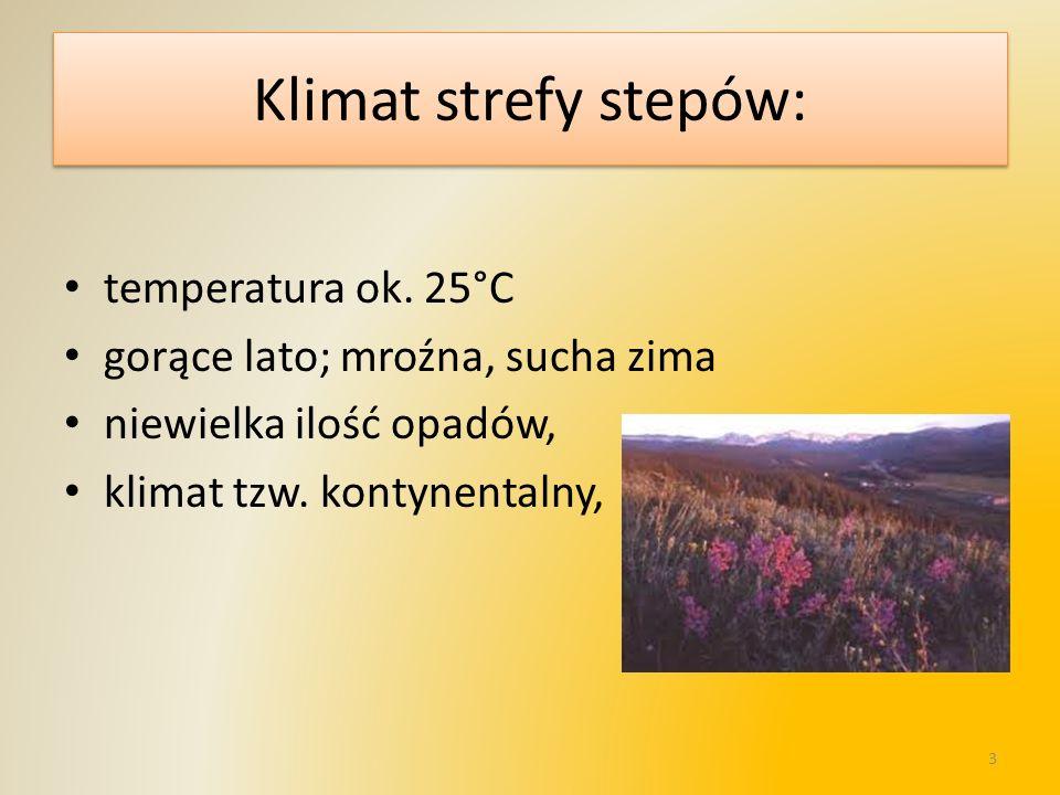 Klimat strefy stepów: temperatura ok. 25°C gorące lato; mroźna, sucha zima niewielka ilość opadów, klimat tzw. kontynentalny, 3