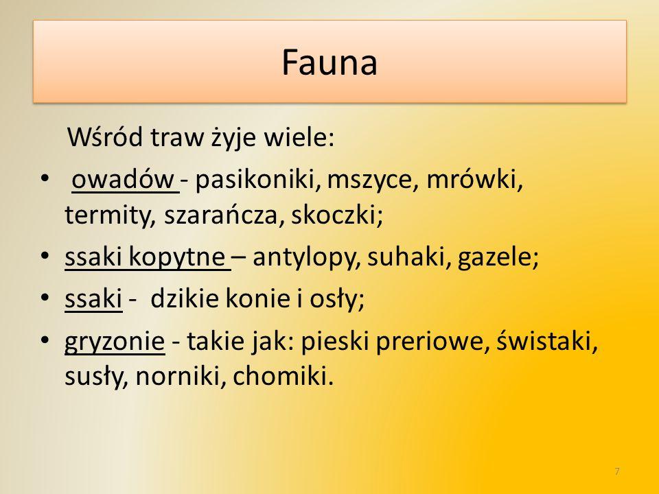 Fauna Wśród traw żyje wiele: owadów - pasikoniki, mszyce, mrówki, termity, szarańcza, skoczki; ssaki kopytne – antylopy, suhaki, gazele; ssaki - dziki