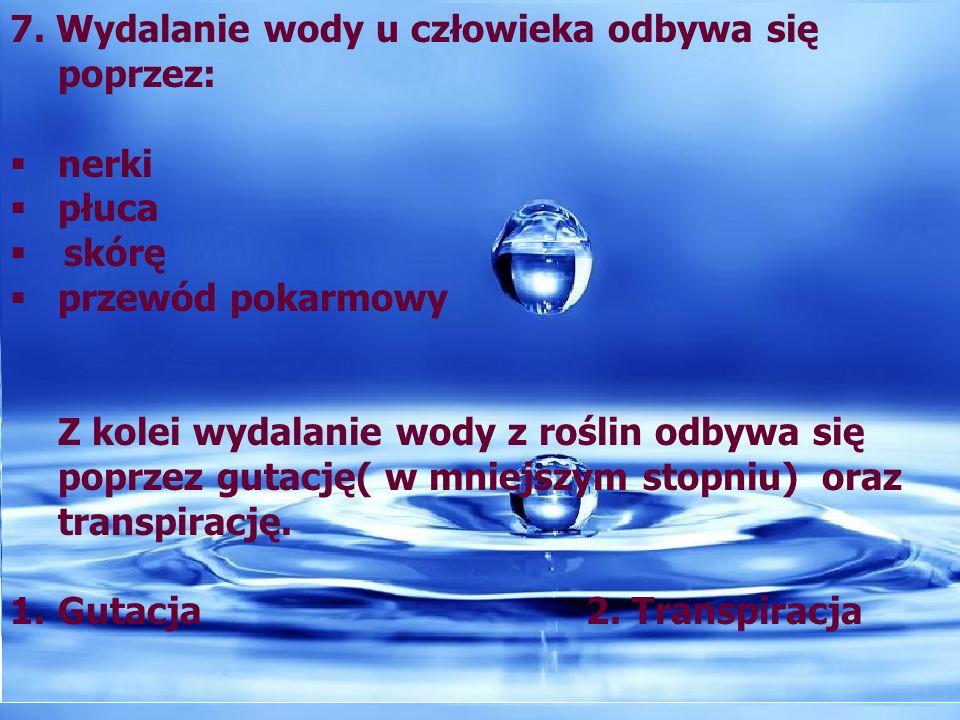 8.Najważniejszą rolę w gospodarce wodnej organizmu odgrywają nerki.
