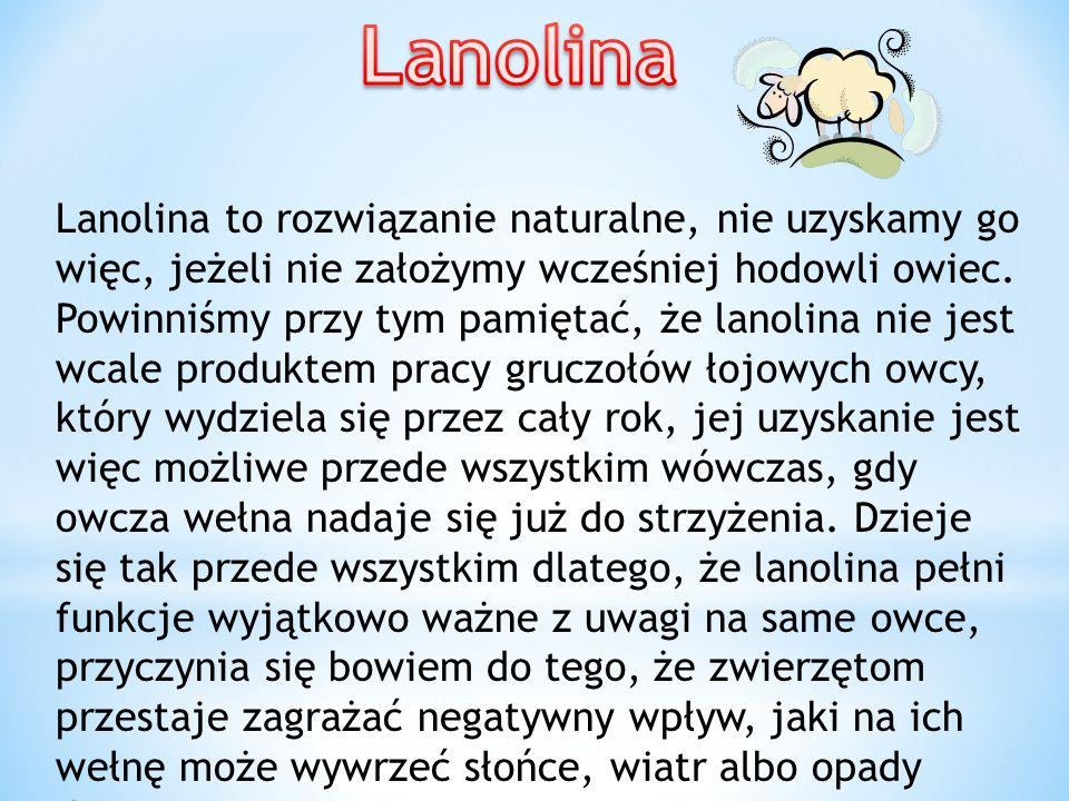 Lanolina to rozwiązanie naturalne, nie uzyskamy go więc, jeżeli nie założymy wcześniej hodowli owiec. Powinniśmy przy tym pamiętać, że lanolina nie je