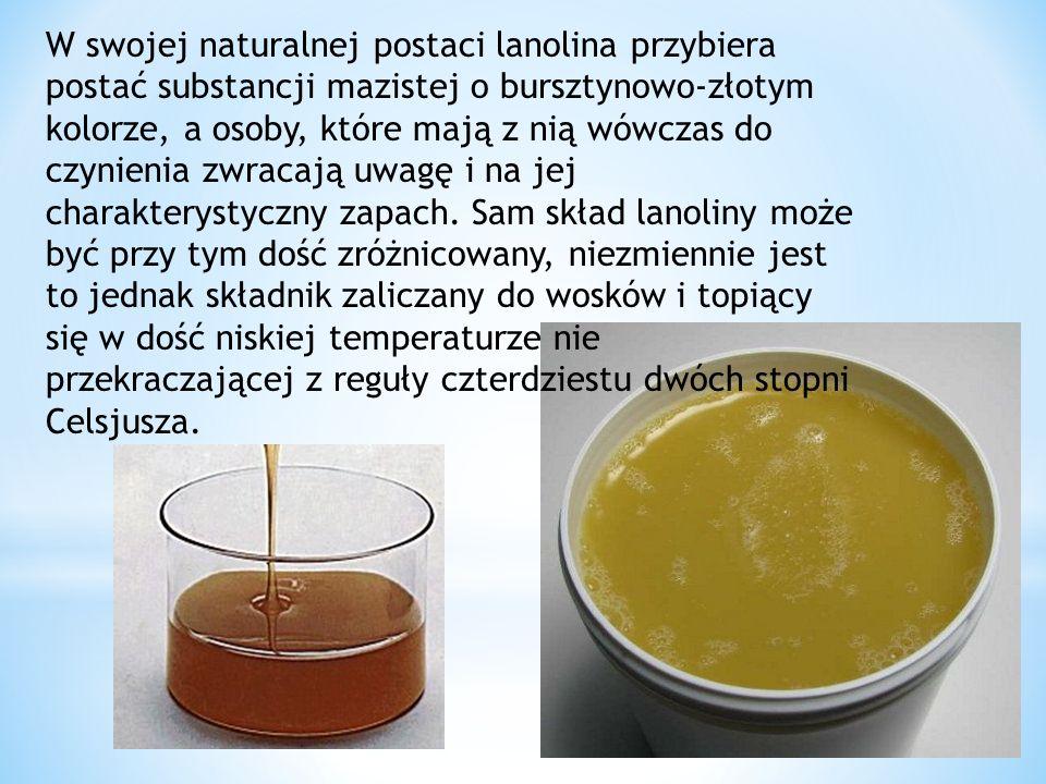 W swojej naturalnej postaci lanolina przybiera postać substancji mazistej o bursztynowo-złotym kolorze, a osoby, które mają z nią wówczas do czynienia