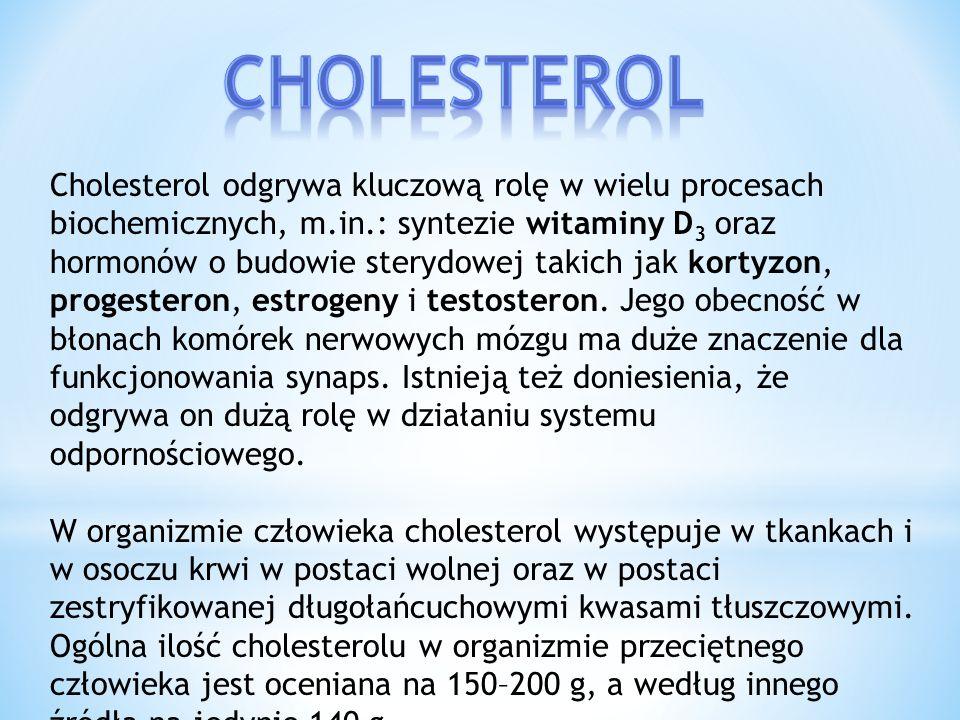 Jedynym źródłem złego cholesterolu w diecie są produkty pochodzenia zwierzęcego, a produkty roślinne (nawet te o dużej zawartości tłuszczu) nie zawierają go.
