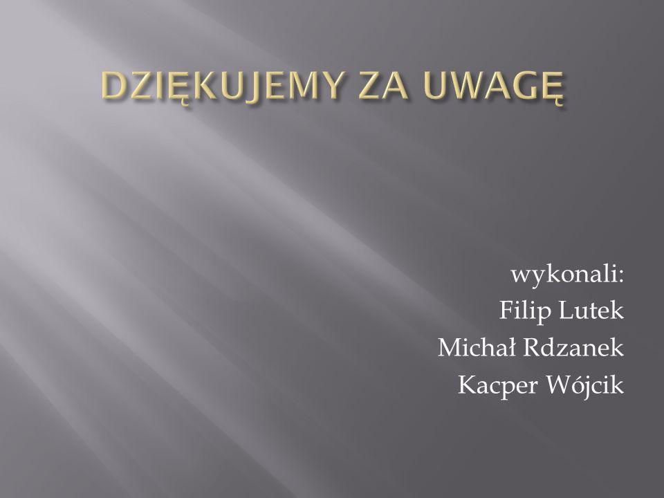 wykonali: Filip Lutek Michał Rdzanek Kacper Wójcik