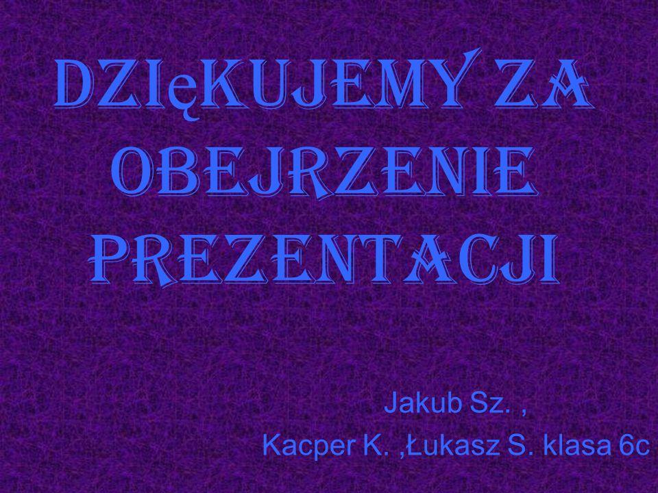 Dzi ę kujemy za obejrzenie prezentacji Jakub Sz., Kacper K.,Łukasz S. klasa 6c