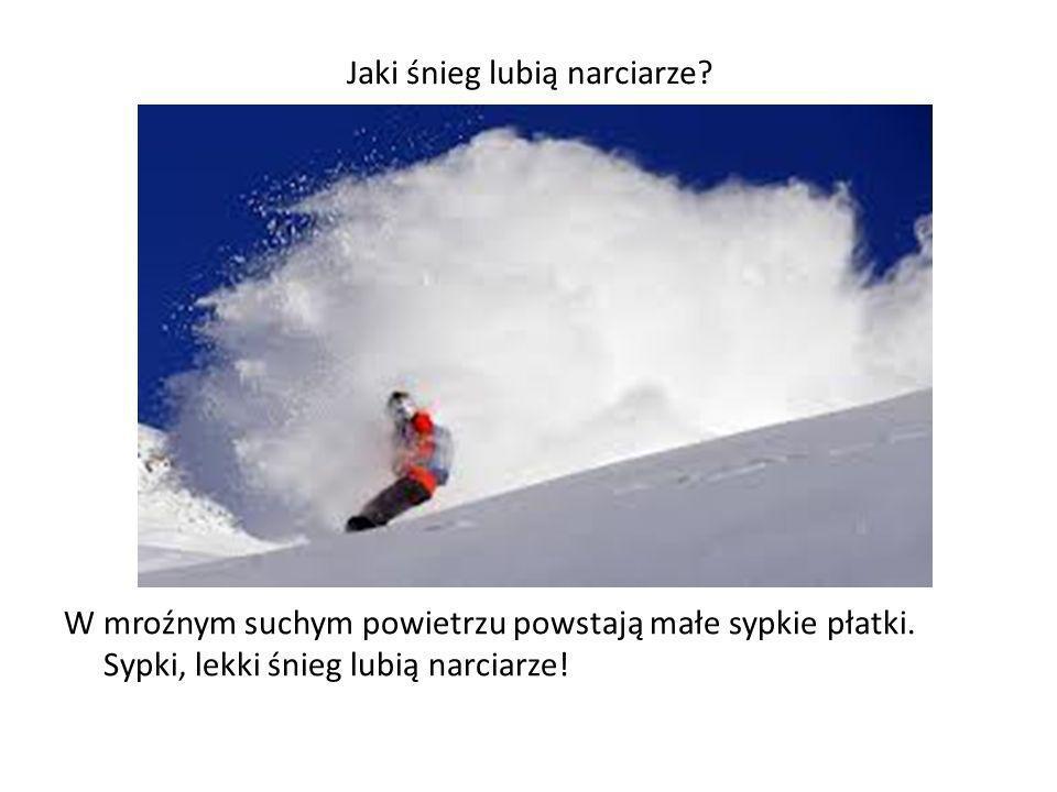 Jaki śnieg lubią narciarze? W mroźnym suchym powietrzu powstają małe sypkie płatki. Sypki, lekki śnieg lubią narciarze!