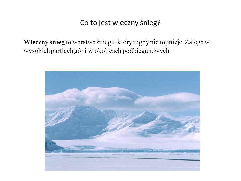 Co to jest wieczny śnieg? Wieczny śnieg to warstwa śniegu, który nigdy nie topnieje. Zalega w wysokich partiach gór i w okolicach podbiegunowych.