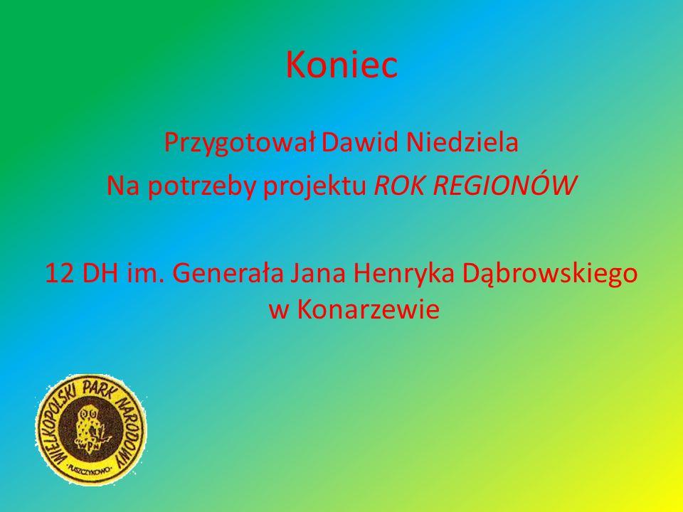 Koniec Przygotował Dawid Niedziela Na potrzeby projektu ROK REGIONÓW 12 DH im. Generała Jana Henryka Dąbrowskiego w Konarzewie