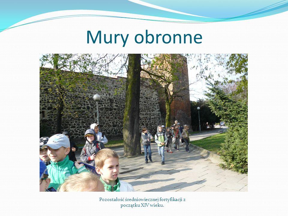 Mury obronne Pozostałość średniowiecznej fortyfikacji z początku XIV wieku.
