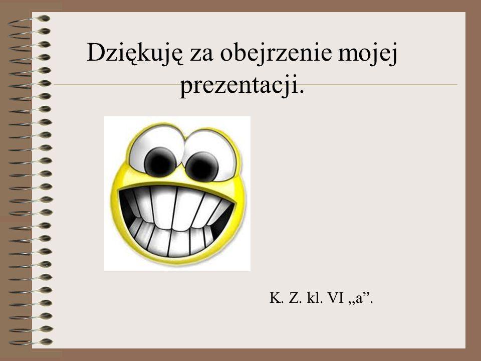 Dziękuję za obejrzenie mojej prezentacji. K. Z. kl. VI a.
