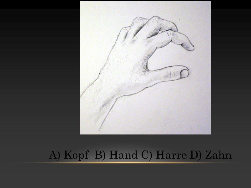 A) Kopf B) Hand C) Harre D) Zahn