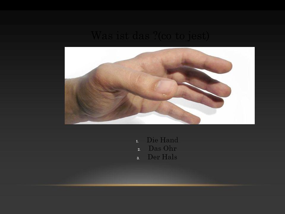 Was ist das ?(co to jest) 1. Die Hand 2. Das Ohr 3. Der Hals