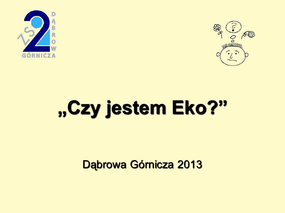 Czy jestem Eko? Dąbrowa Górnicza 2013