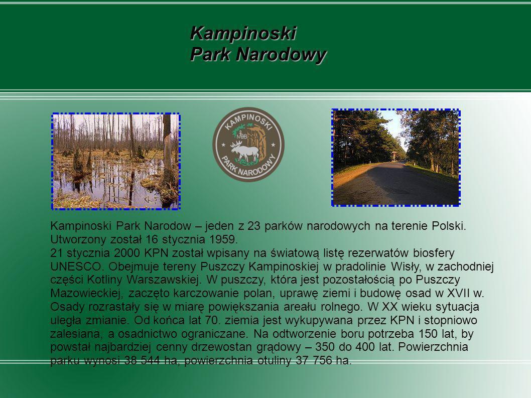 Kampinoski Park Narodowy Kampinoski Park Narodow – jeden z 23 parków narodowych na terenie Polski. Utworzony został 16 stycznia 1959. 21 stycznia 2000