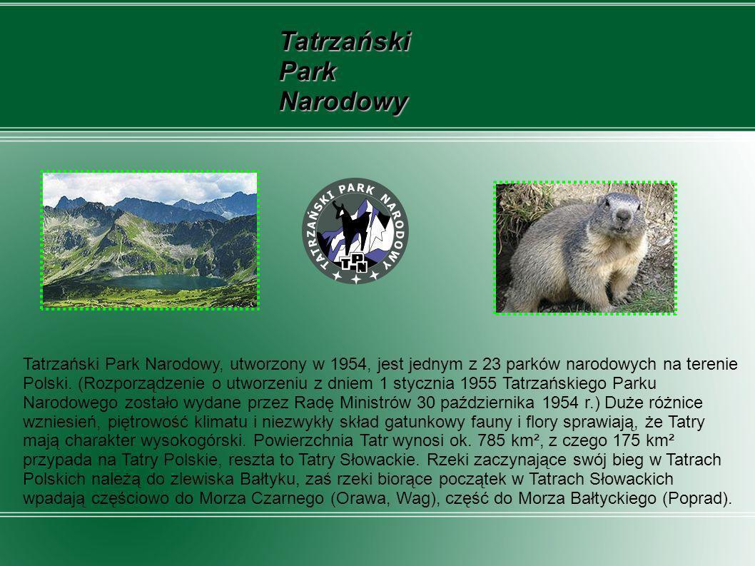 Tatrzański Park Narodowy Tatrzański Park Narodowy, utworzony w 1954, jest jednym z 23 parków narodowych na terenie Polski. (Rozporządzenie o utworzeni