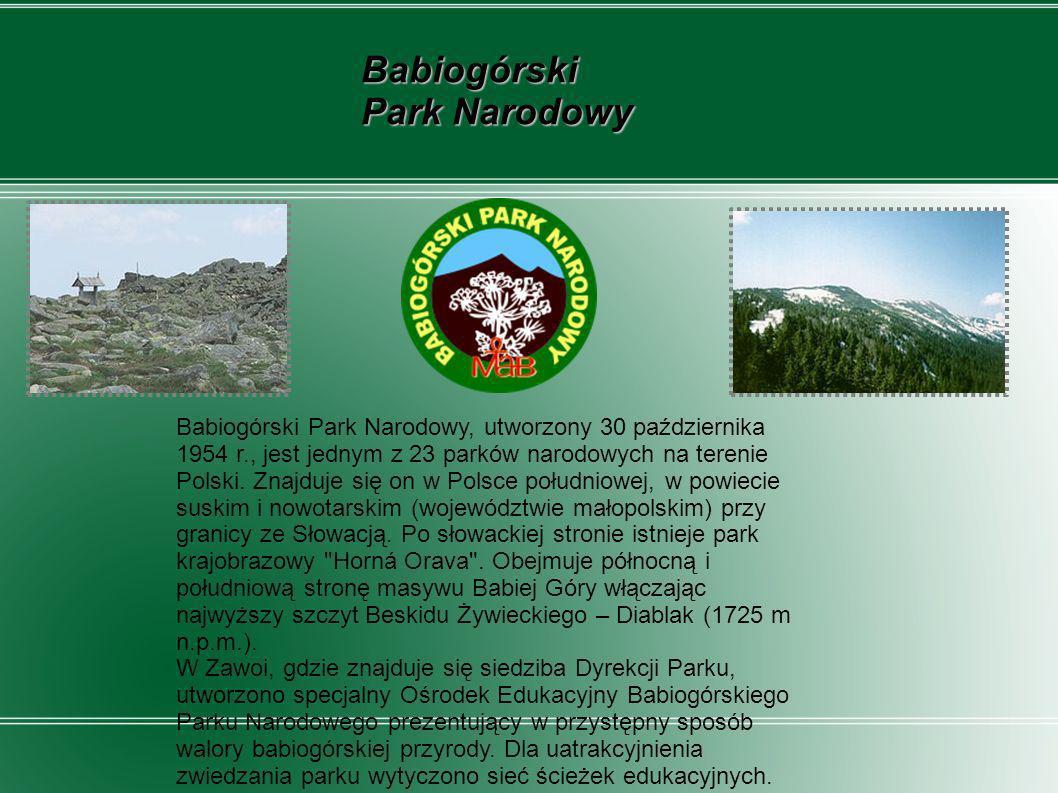Babiogórski Park Narodowy, utworzony 30 października 1954 r., jest jednym z 23 parków narodowych na terenie Polski. Znajduje się on w Polsce południow