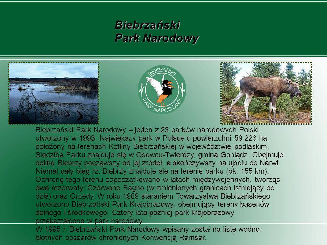 Bieszczadzki Park Narodowy, utworzony w 1973 r., jest jednym z 23 parków narodowych na terenie Polski w Euroregionie Karpackim.