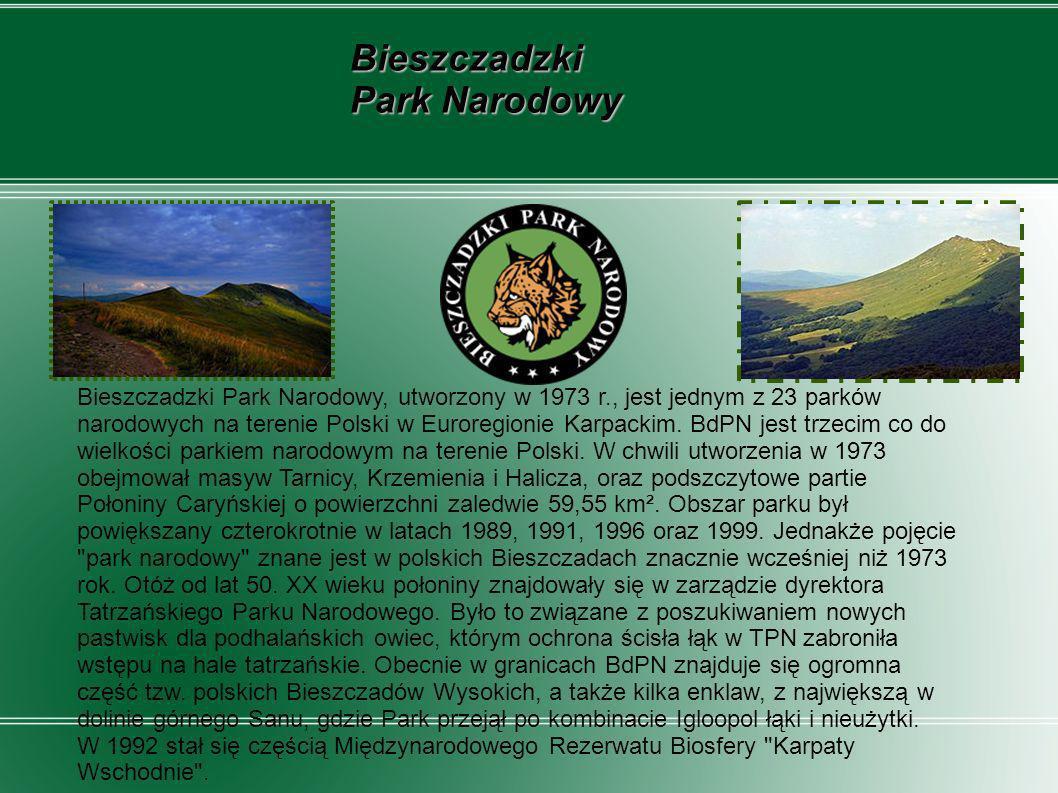 Bieszczadzki Park Narodowy, utworzony w 1973 r., jest jednym z 23 parków narodowych na terenie Polski w Euroregionie Karpackim. BdPN jest trzecim co d