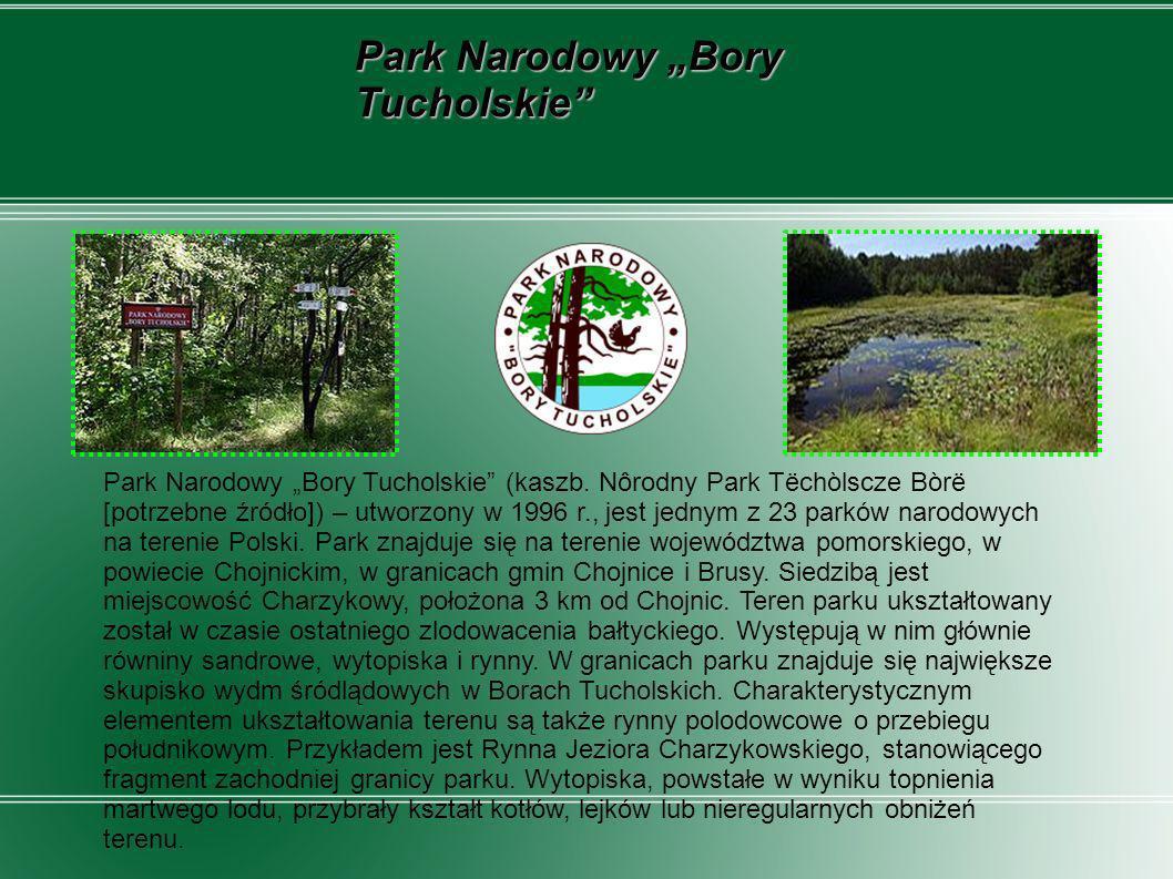 Park Narodowy Bory Tucholskie (kaszb. Nôrodny Park Tëchòlscze Bòrë [potrzebne źródło]) – utworzony w 1996 r., jest jednym z 23 parków narodowych na te