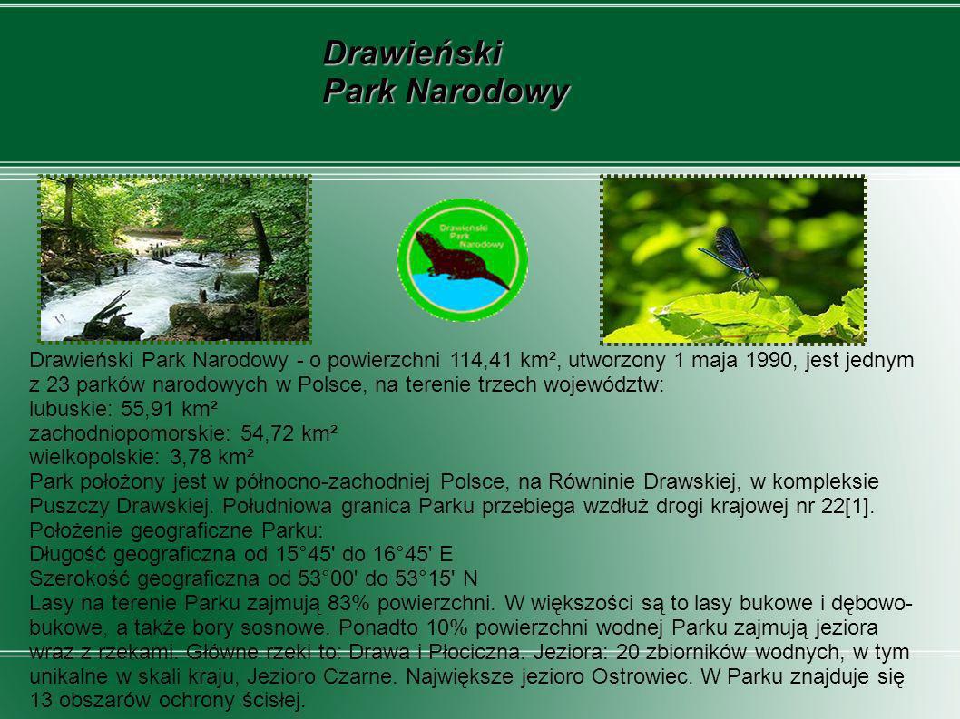 Drawieński Park Narodowy - o powierzchni 114,41 km², utworzony 1 maja 1990, jest jednym z 23 parków narodowych w Polsce, na terenie trzech województw:
