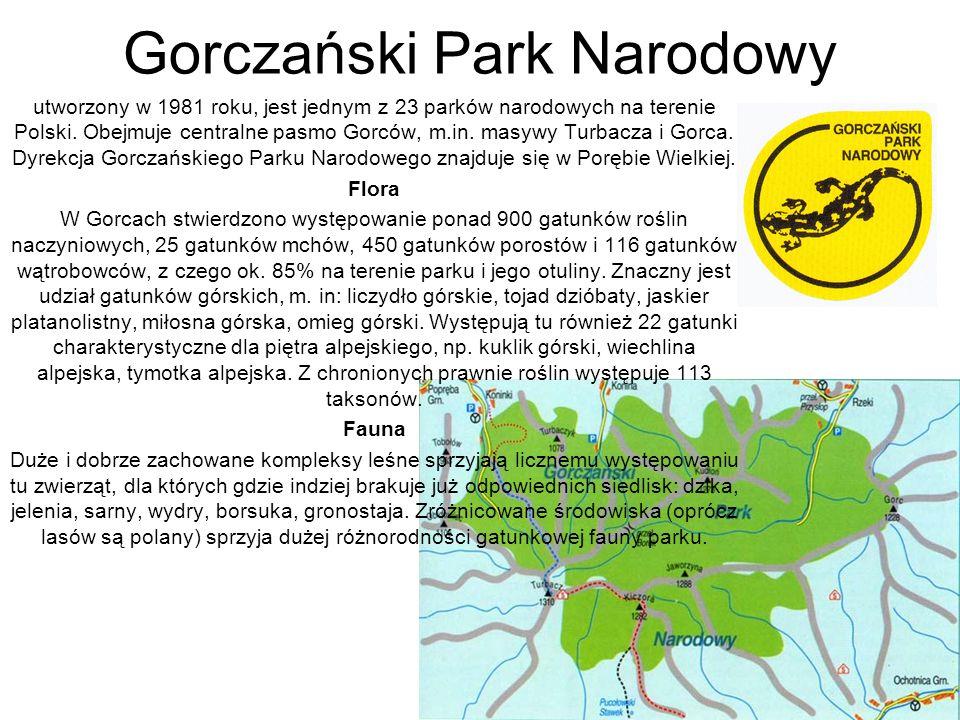 Gorczański Park Narodowy utworzony w 1981 roku, jest jednym z 23 parków narodowych na terenie Polski. Obejmuje centralne pasmo Gorców, m.in. masywy Tu