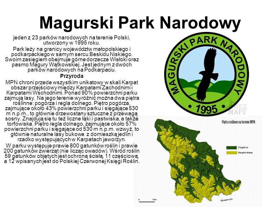 Magurski Park Narodowy jeden z 23 parków narodowych na terenie Polski, utworzony w 1995 roku. Park leży na granicy województw małopolskiego i podkarpa