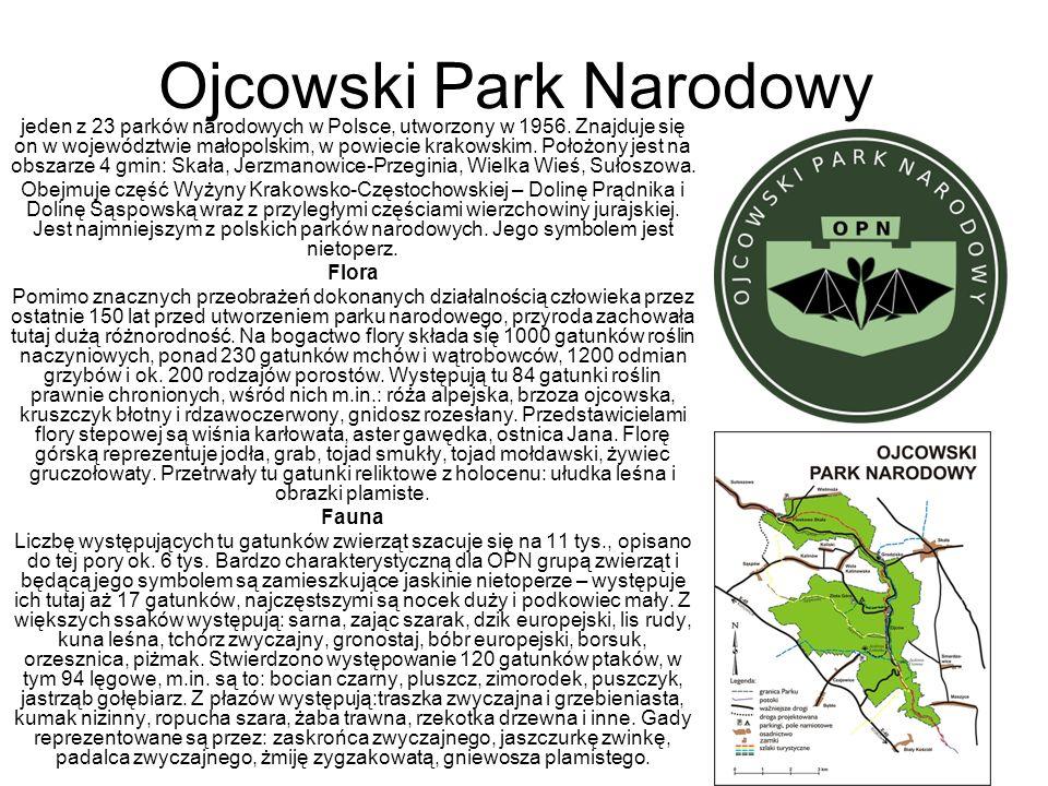 Ojcowski Park Narodowy jeden z 23 parków narodowych w Polsce, utworzony w 1956. Znajduje się on w województwie małopolskim, w powiecie krakowskim. Poł