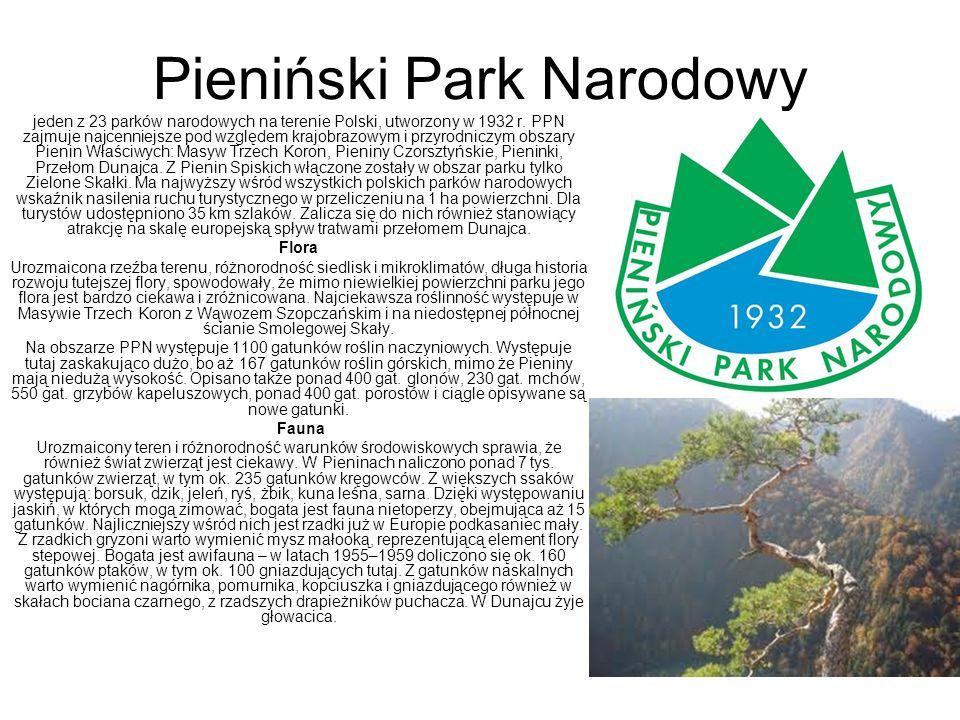 Pieniński Park Narodowy jeden z 23 parków narodowych na terenie Polski, utworzony w 1932 r. PPN zajmuje najcenniejsze pod względem krajobrazowym i prz