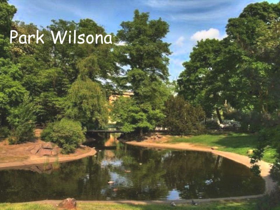 Park Wilsona