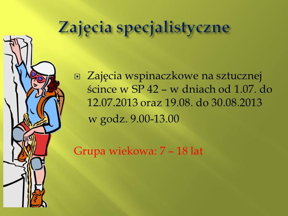 Zajęcia wspinaczkowe na sztucznej ścince w SP 42 – w dniach od 1.07. do 12.07.2013 oraz 19.08. do 30.08.2013 w godz. 9.00-13.00 Grupa wiekowa: 7 – 18