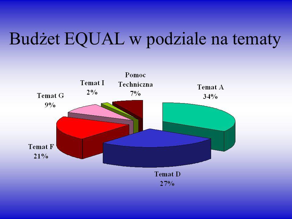 Budżet EQUAL w podziale na tematy