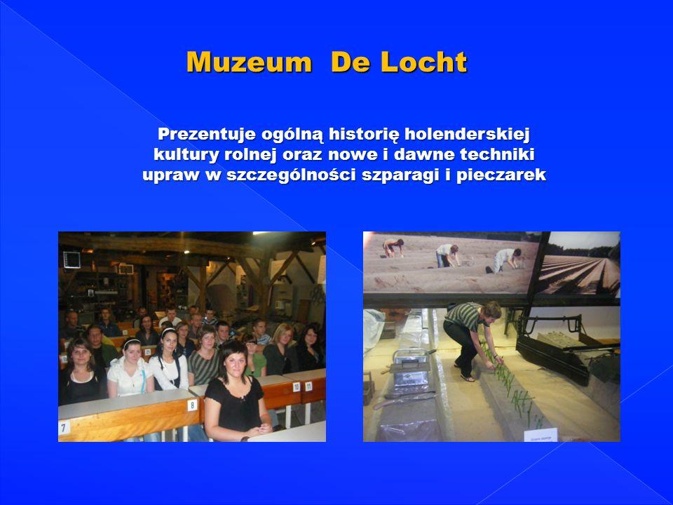 Muzeum De Locht Prezentuje ogólną historię holenderskiej kultury rolnej oraz nowe i dawne techniki upraw w szczególności szparagi i pieczarek