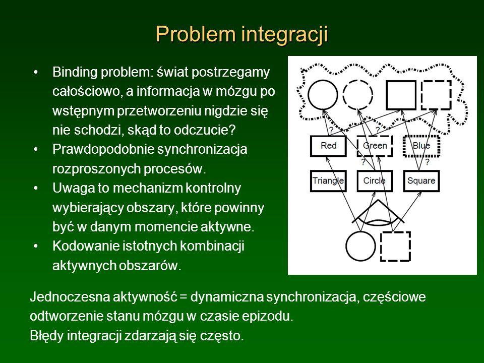Problem integracji Binding problem: świat postrzegamy całościowo, a informacja w mózgu po wstępnym przetworzeniu nigdzie się nie schodzi, skąd to odcz