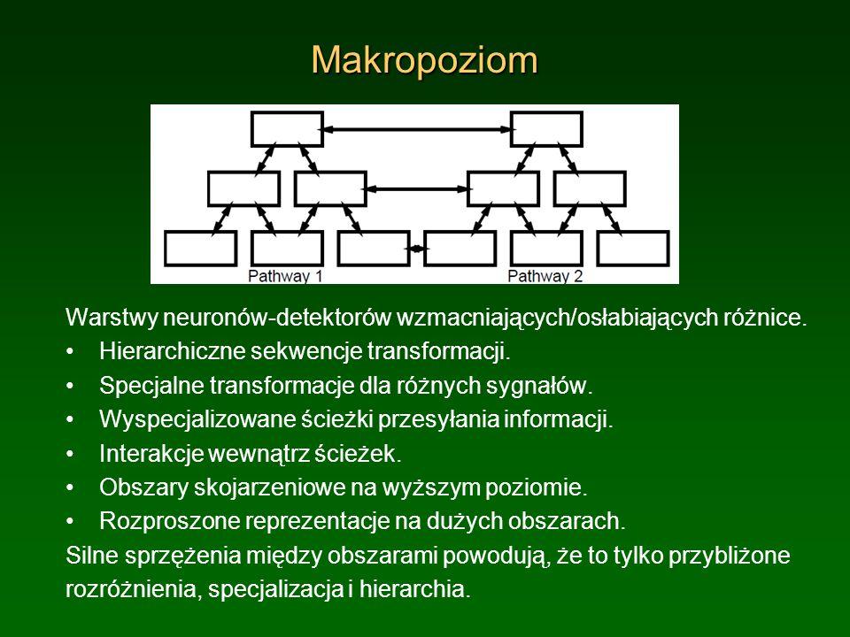 Makropoziom Warstwy neuronów-detektorów wzmacniających/osłabiających różnice. Hierarchiczne sekwencje transformacji. Specjalne transformacje dla różny