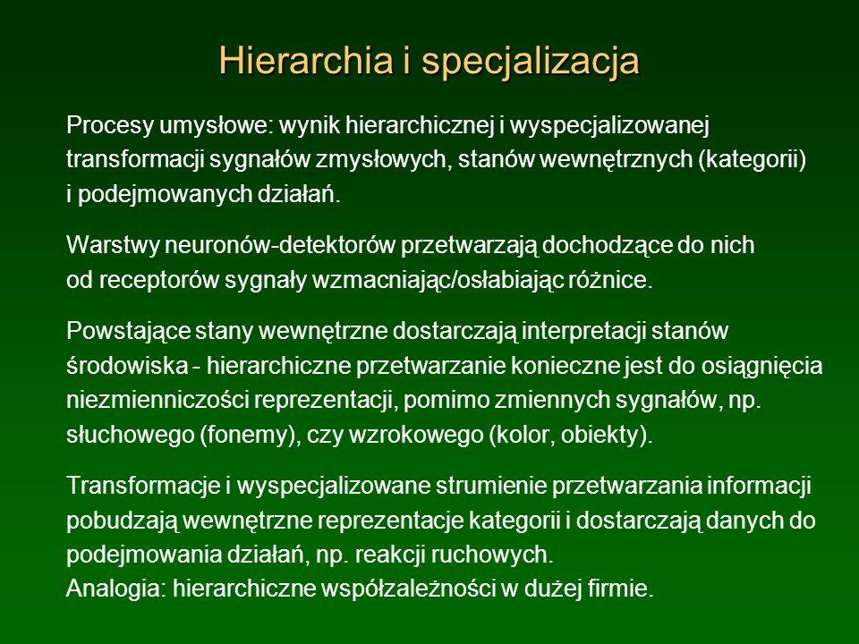 Hierarchia i specjalizacja Procesy umysłowe: wynik hierarchicznej i wyspecjalizowanej transformacji sygnałów zmysłowych, stanów wewnętrznych (kategori