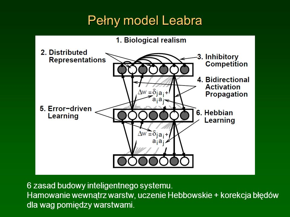 Pełny model Leabra 6 zasad budowy inteligentnego systemu. Hamowanie wewnątrz warstw, uczenie Hebbowskie + korekcja błędów dla wag pomiędzy warstwami.