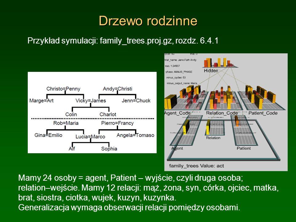 Drzewo rodzinne Przykład symulacji: family_trees.proj.gz, rozdz. 6.4.1 Mamy 24 osoby = agent, Patient – wyjście, czyli druga osoba; relation–wejście.