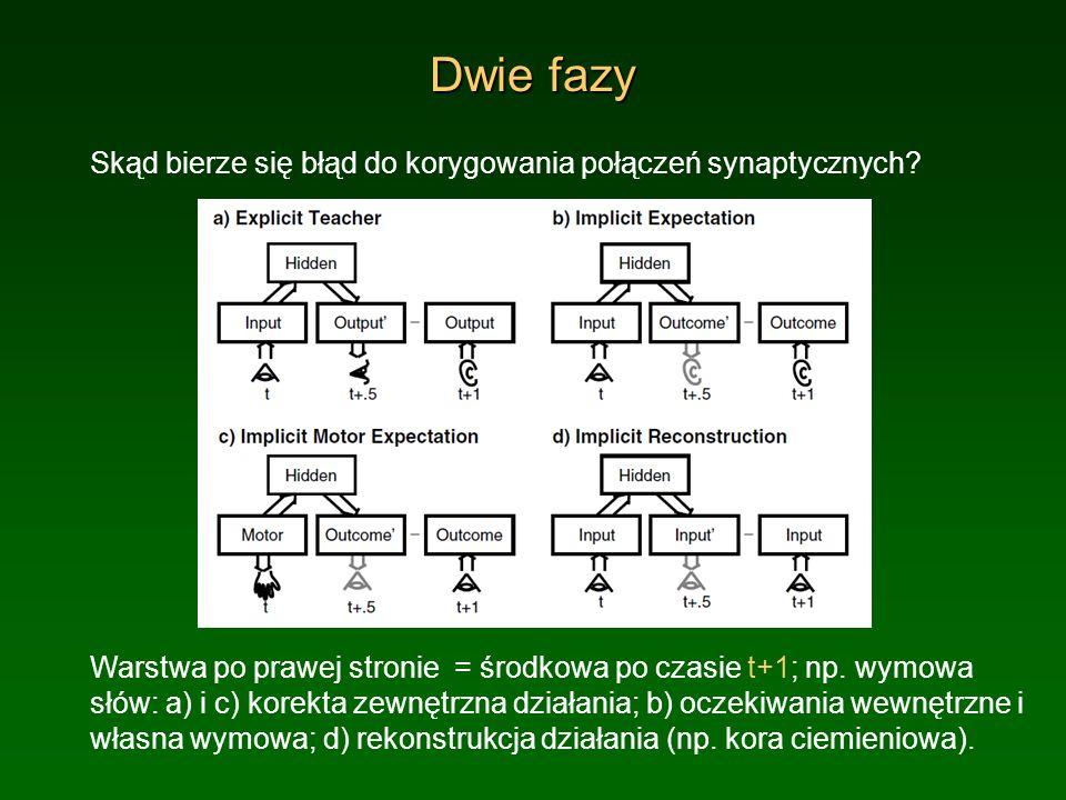 Dwie fazy Skąd bierze się błąd do korygowania połączeń synaptycznych? Warstwa po prawej stronie = środkowa po czasie t+1; np. wymowa słów: a) i c) kor
