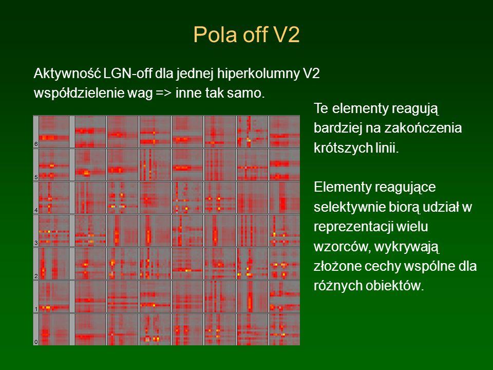 Korelacje V2 – obiekty wyjściowe Reakcja jednostek V2 na wykrywanie poszczególnych obiektów, czyli korelacje V2 – uśrednione wyjście 4x5 = 20 obiektów.