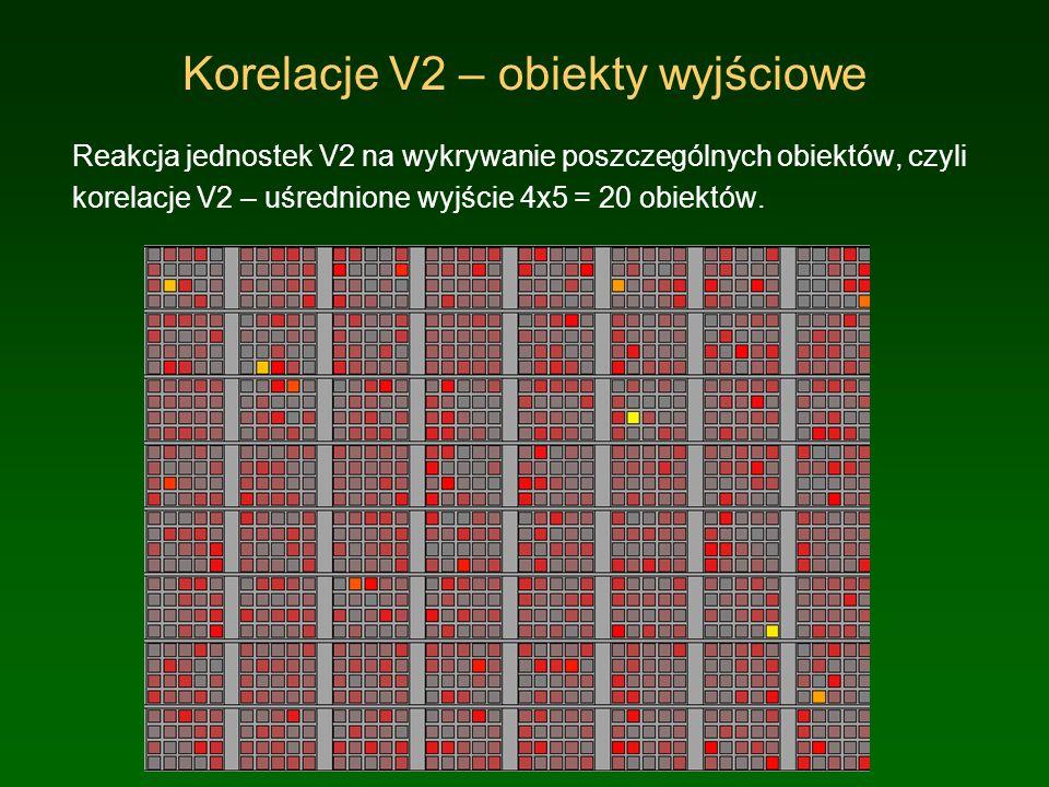 Korelacje V4 – obiekty wyjściowe Uśredniona reakcja jednostek V4 na wykrywanie poszczególnych obiektów, czyli korelacje V4 – uśrednione wyjście 4x5.