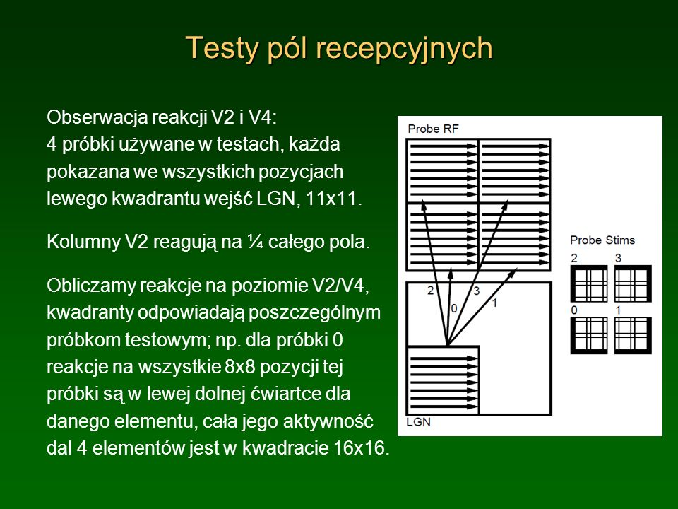 Testy V2 dla próbek Hiperkolumna V2 ma 8x8 elementów, reakcje każdego na 4 próbki uśrednione po wszystkich pozycjach są w małych kwadratach 16x16.
