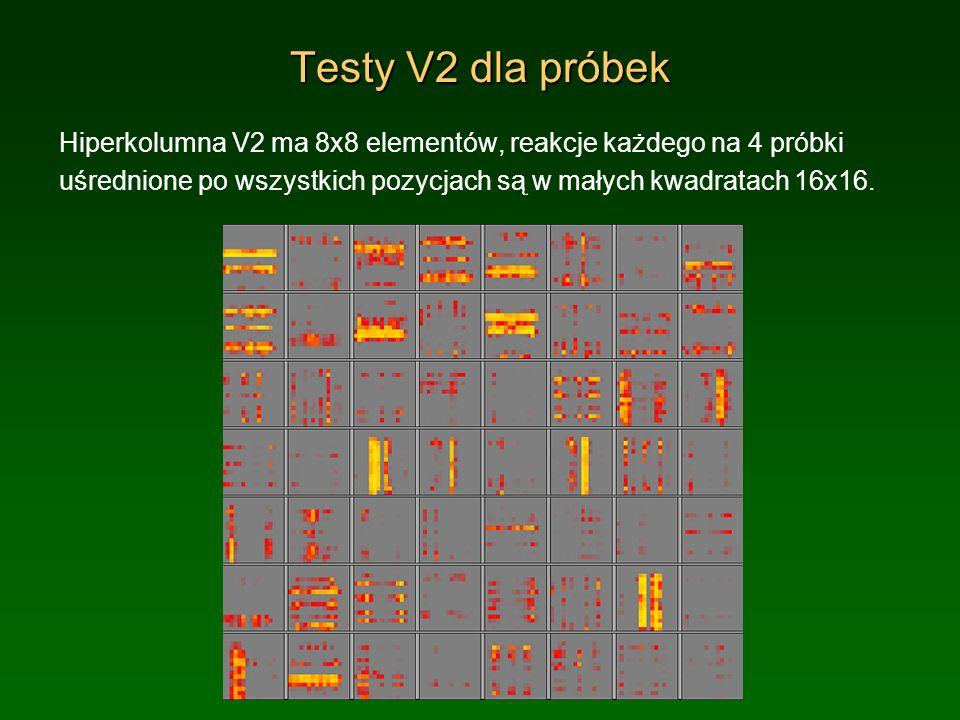 Testy V4 dla próbek V4 ma 10x10 elementów, reakcje każdego na 4 próbki uśrednione po wszystkich pozycjach są w małych kwadratach 16x16.